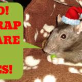 Top 5 Craptastic Christmas Classics