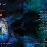 Natalie Imbruglia's Firebird